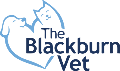 The Blackburn Vet VIC logo